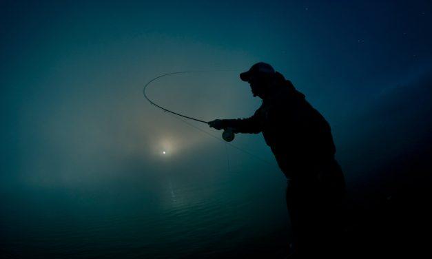 Éjszakai horgászat – Tájékoztatás